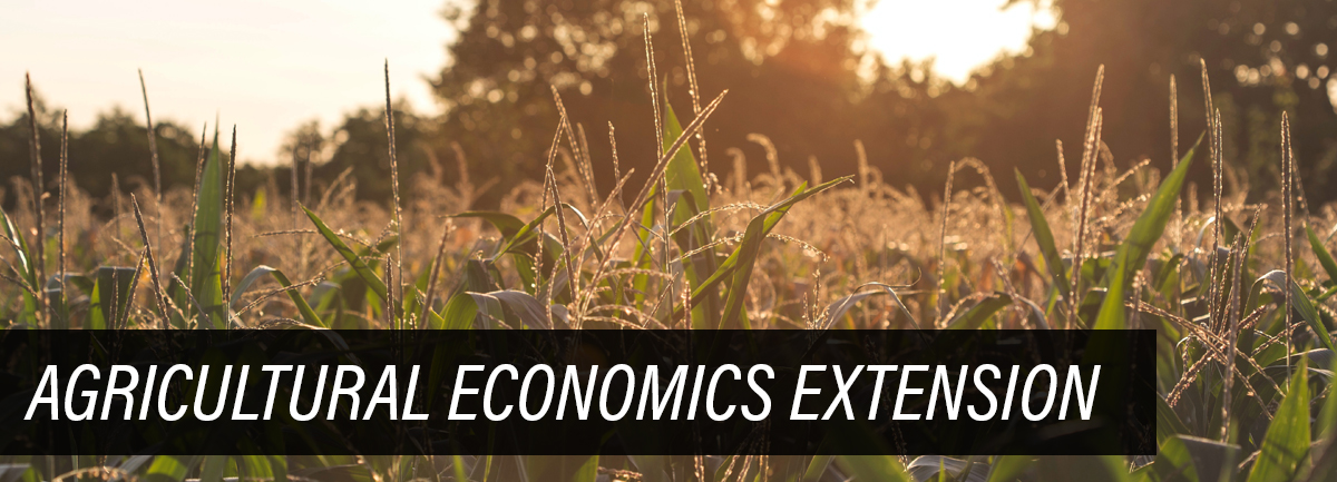 Image of corn field with text overlay saying Agricultural Economics Extension
