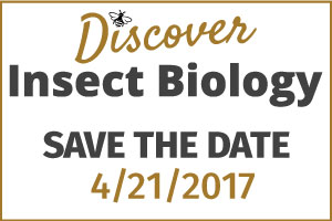 Discover Insect Biology 4/21/2017